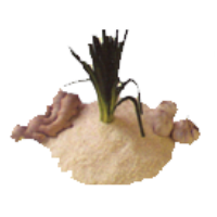 Logo Image Cuisine